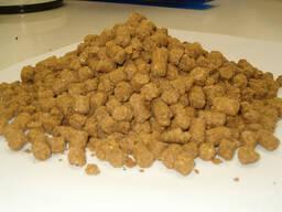 Distiller's dried grains (draff)