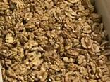 Грецкий орех - фото 1