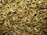 Wholesale Walnuts from Ukraine - photo 1