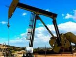 JP54, A1, D2, D6, M100, Crude oil, gasolene, LPG, LNG - фото 1