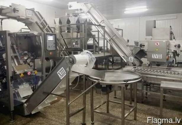 Линия дозировки и упаковки рыбы 2Т/час