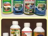 Modern Insecticide Limited Dubaiинсектициды, фунгициды - photo 2