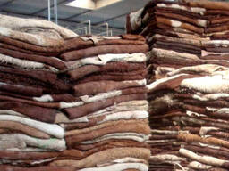 Sell cattle hides wholesale
