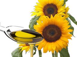 Sunflower refined oil in bulk