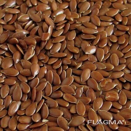ТОО Safe Grain лен